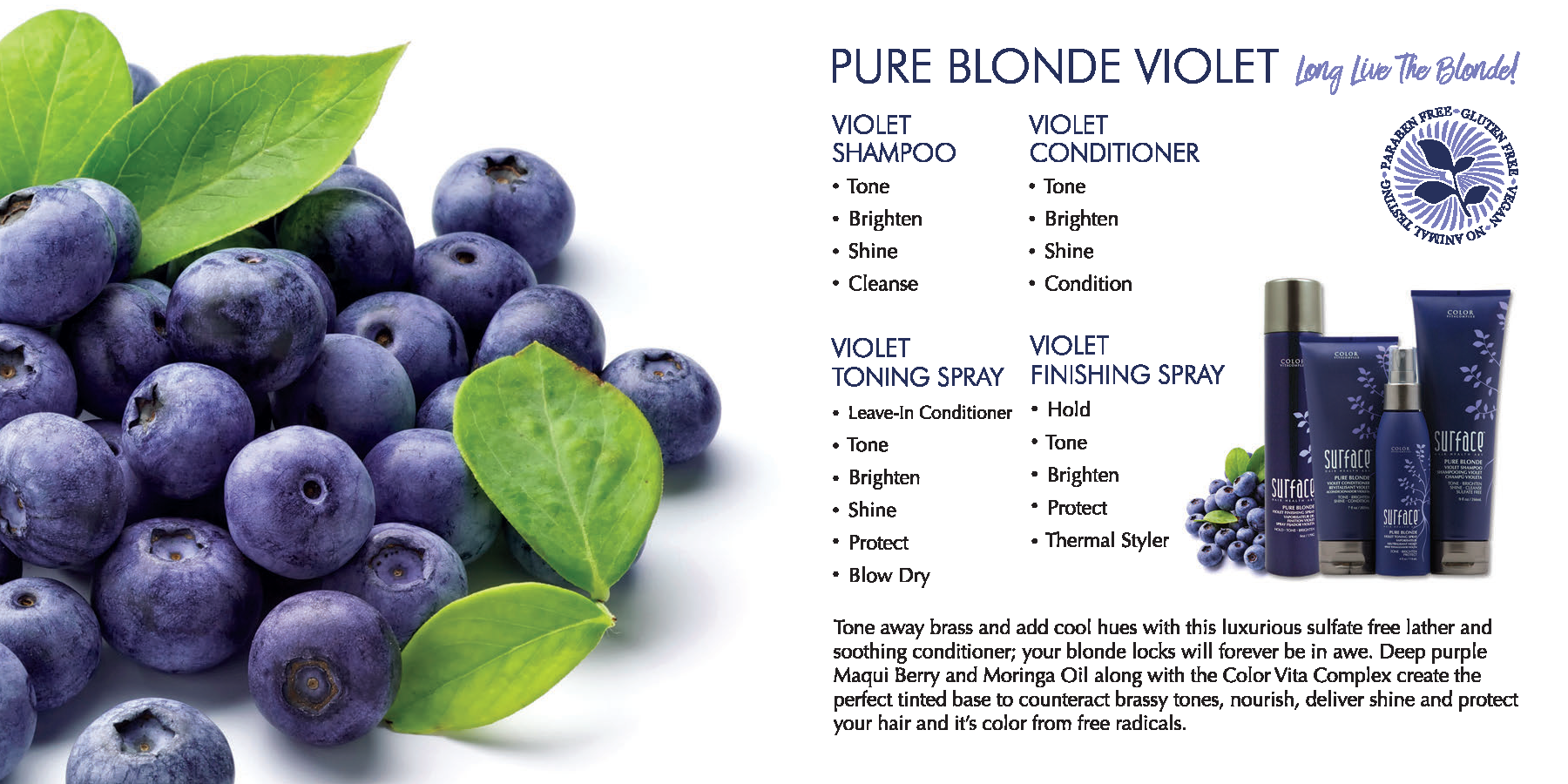 Surface Pure Blonde Violet Haircare Products